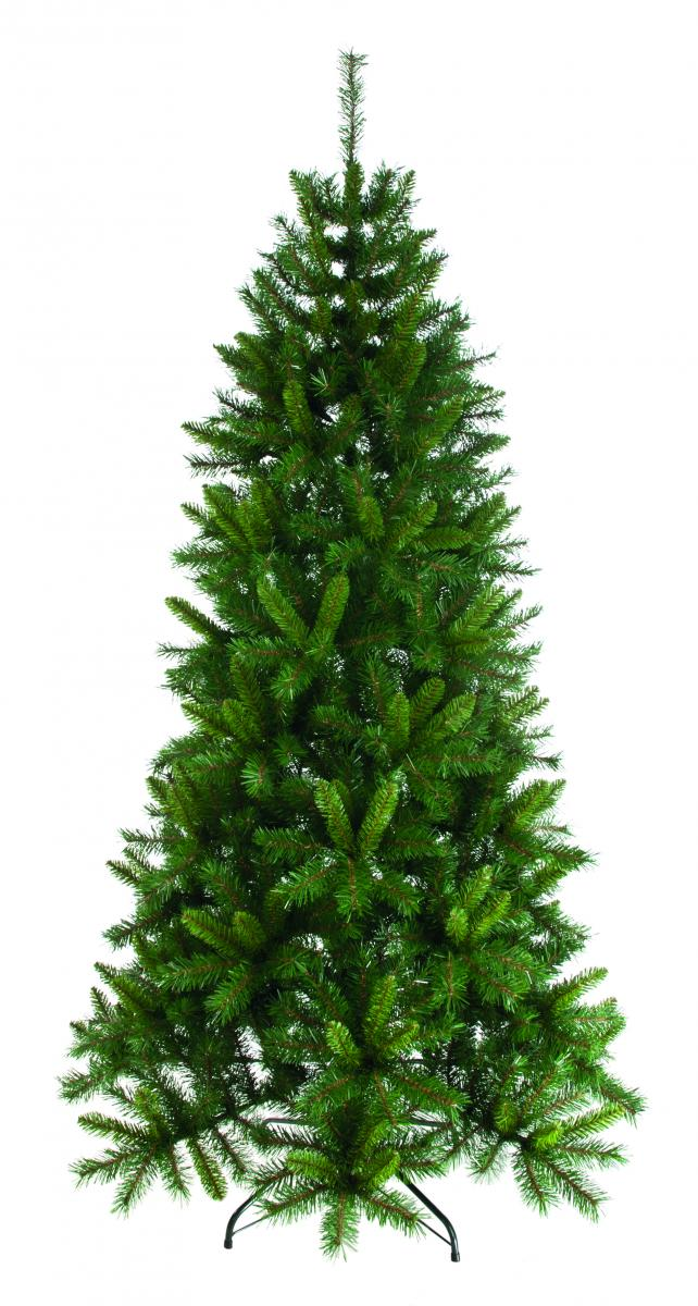 Green heartwood spruce Christmas tree - 180cm – Now Only £45.00