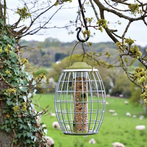 Ultra Squirrel Proof Seed Feeder – Now Only £15.00