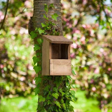 Classic Robin Nest Box – Now Only £5.00