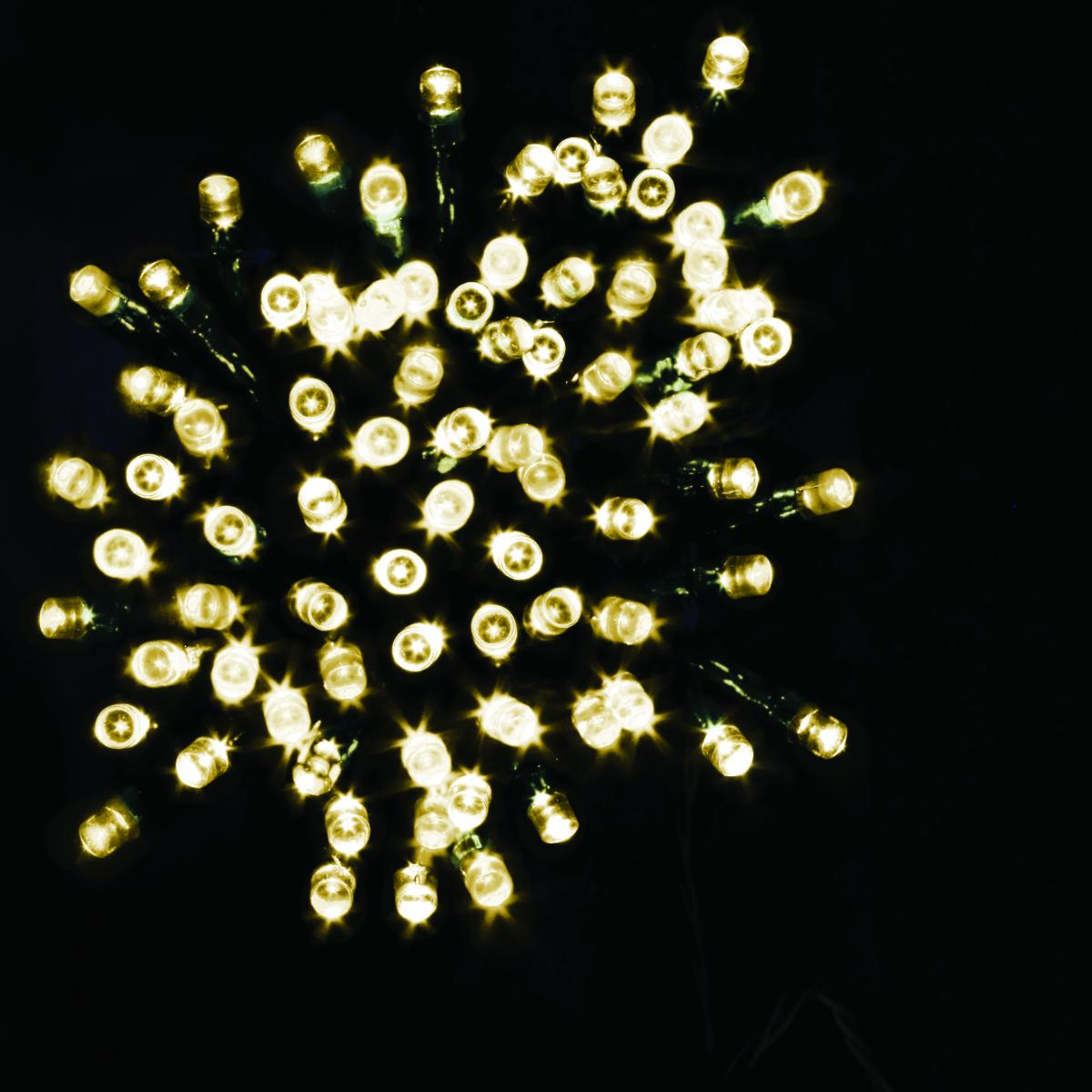 100 LED Battery Operated Timer Lights  - Warm White – Now Only £6.00