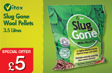 Slug Gone Wool Pellets 3.5L – Now Only £5.00