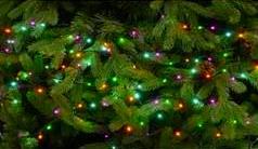 760 Glow-Worm Lights - Aurora – Now Only £27.00