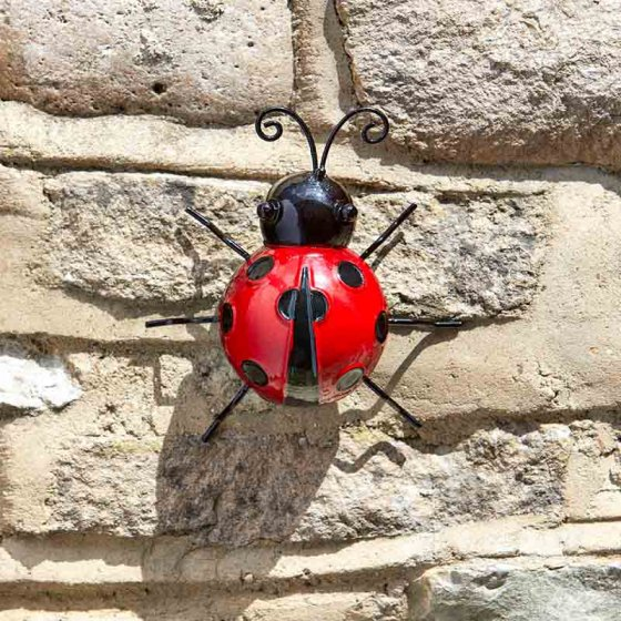 Decor Ladybird – Now Only £4.00