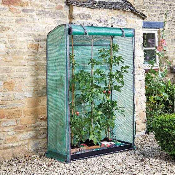 Tomato GroZone – Now Only £25.00
