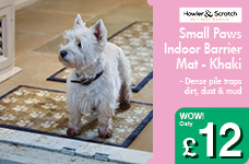 Small Paws Indoor Barrier Mat - Khaki – Now Only £12.00